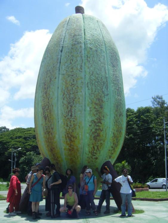 The huge cocoa. Barlovento / Rio Chico.