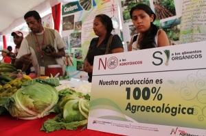 agroecologico