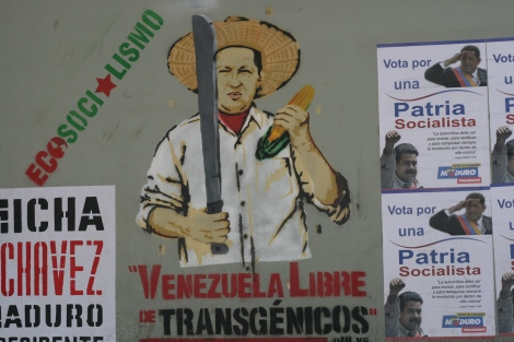 """How GMO Seeds and Monsanto/Bayer's """"RoundUp"""" are Driving US Policy inVenezuela"""
