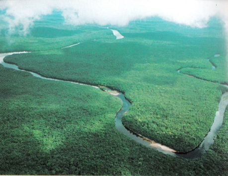 "The Orinoco river. Venezuela is categorised as one of the world's seventeen ""mega bio-diverse"" countries (wikipedia.org)"