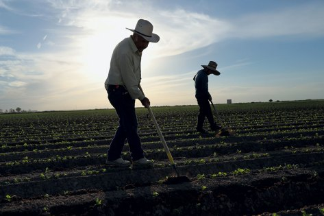 migrant-fieldworkers-farm-workers